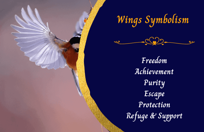 Symbolism of wings