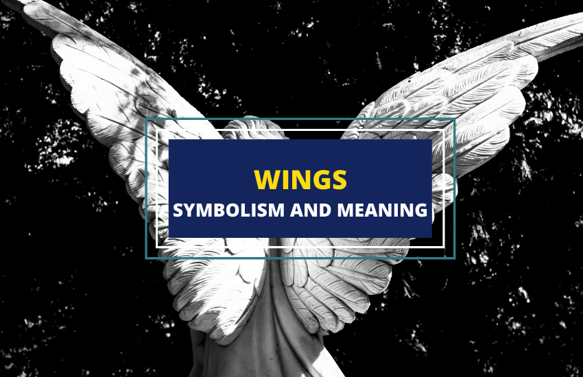 Wings symbolism and meaning