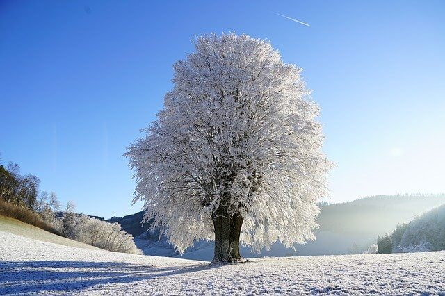 Winter symbolism