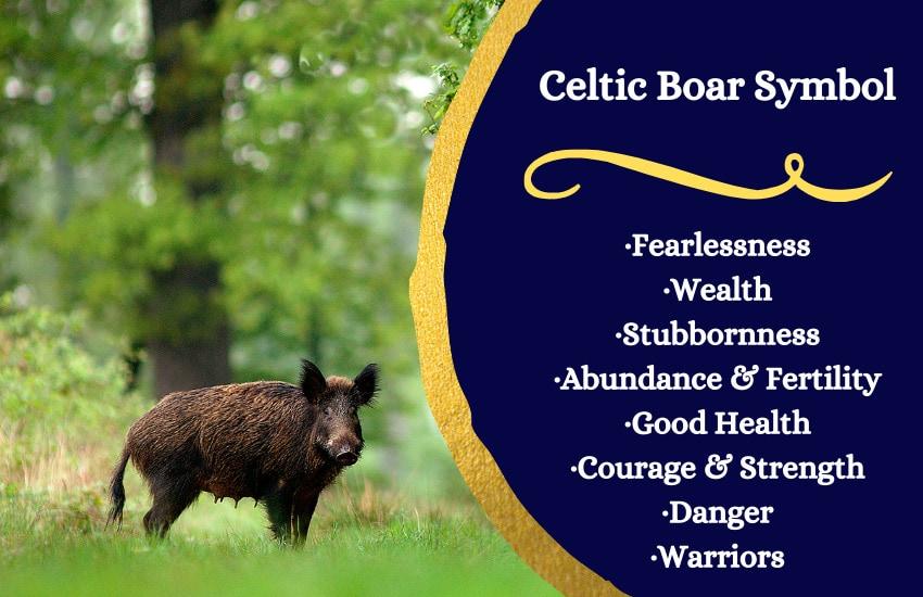 Celtic boar symbolism