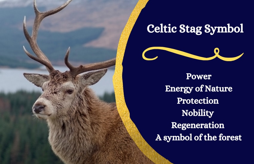 Stag symbolism meaning