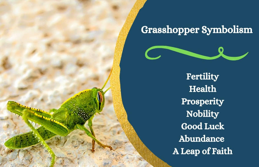 grasshopper symbolism and meaning