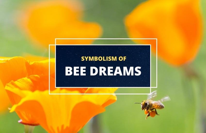 Dreaming of bees symbolism