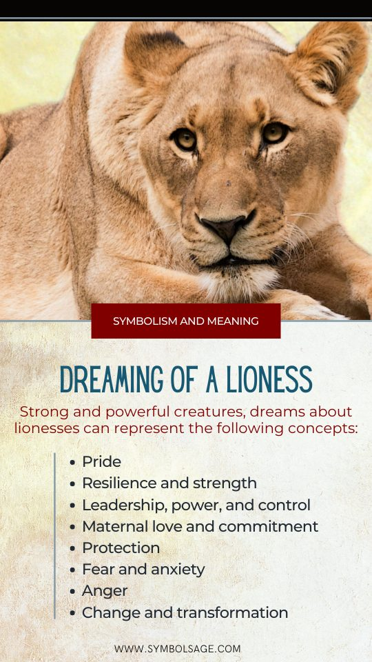 Lioness dream symbolism meaning