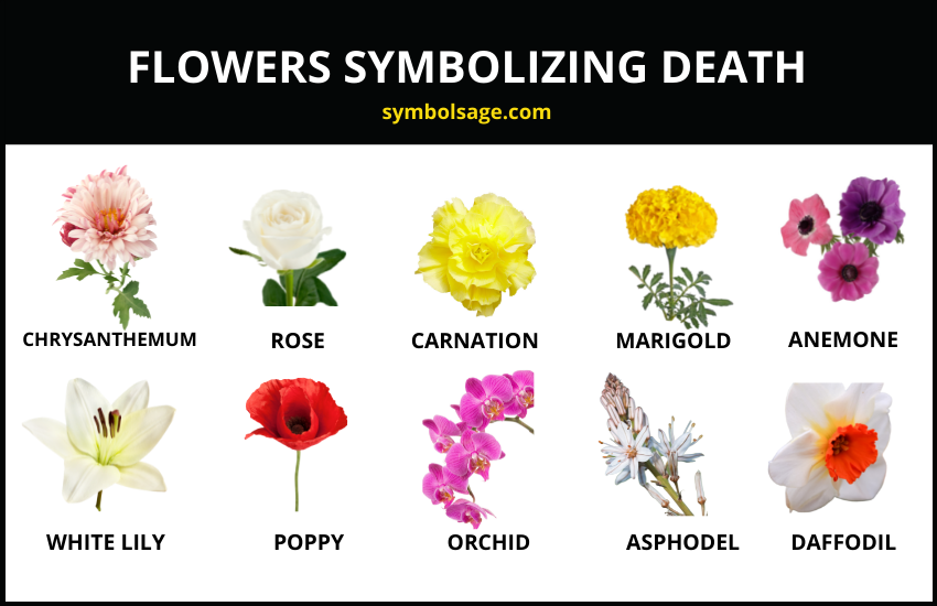 Flowers symbolizing death