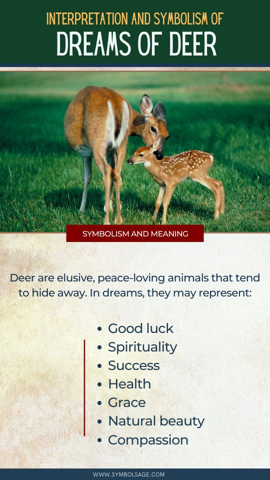Dreams about Deer meaning