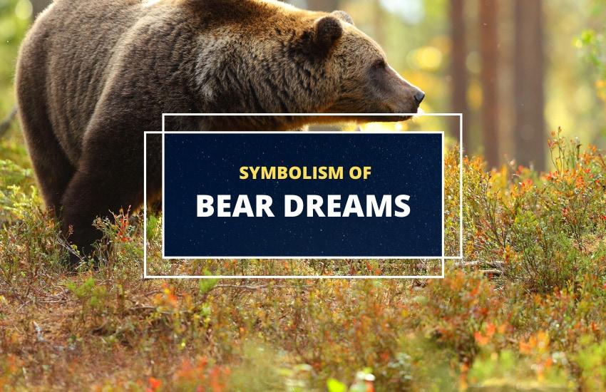 Dreaming of bears