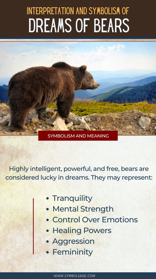 Dreaming of bears meaning