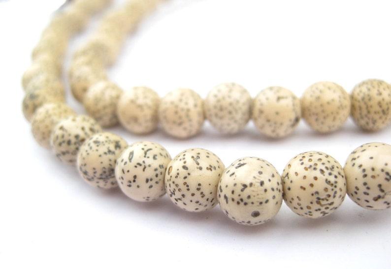 Lotus seed bead