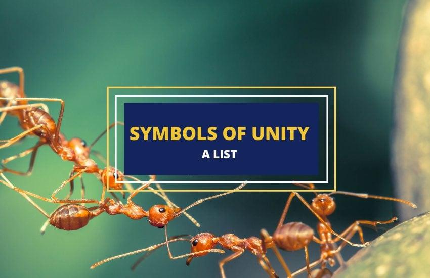 Unity Symbols